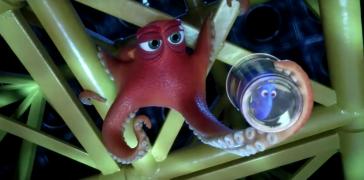 poulpe pieuvre