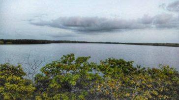 aire marine protégée de keur bamboung senegal