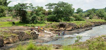 découverte de la guinée