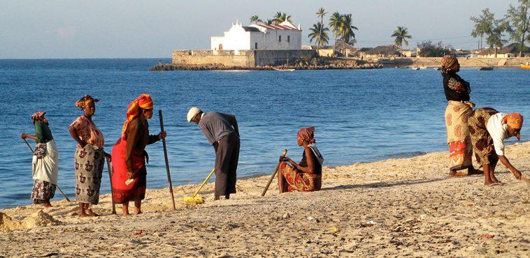 mozambique safari et plage