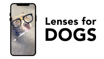 snapchat filtre pour chien