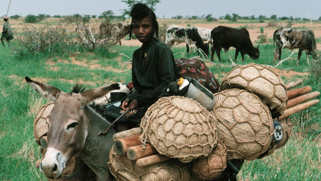 peul niger
