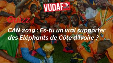 vudaf quizz éléphants de côte d'ivoire