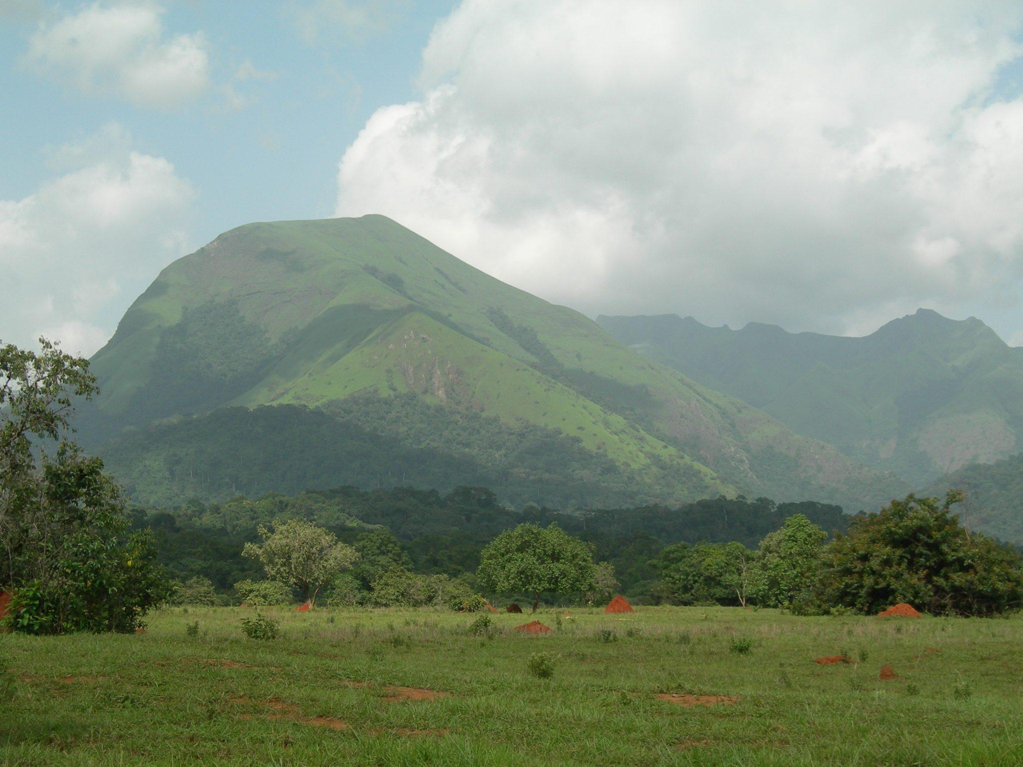 Mont Nimba